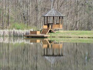 gazebo on a forest lakeside